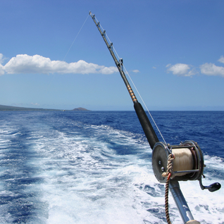 A great day of deep sea fishing with Gift Experience Day!